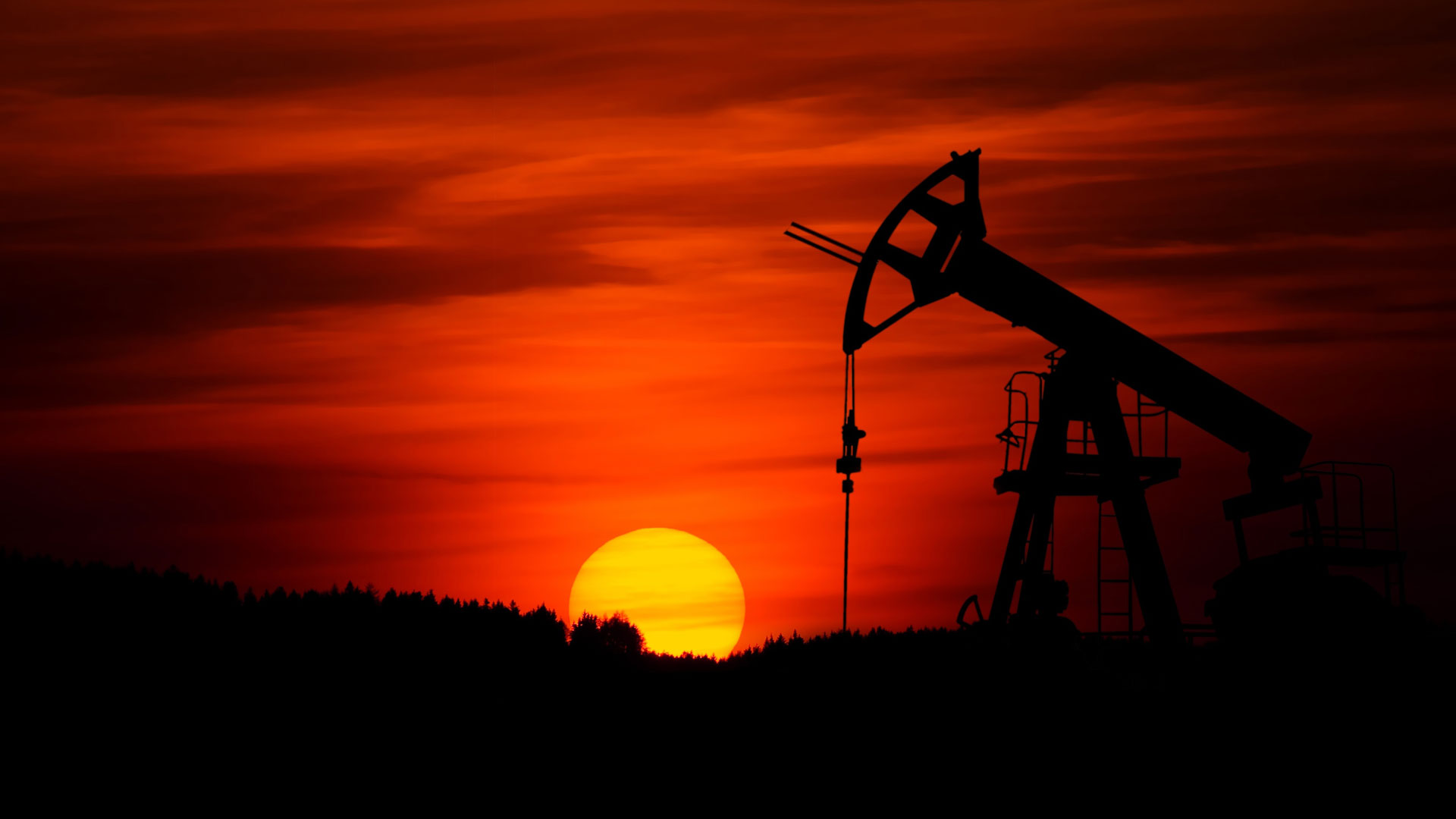 Fossil fuels are major contributors to carbon emissions